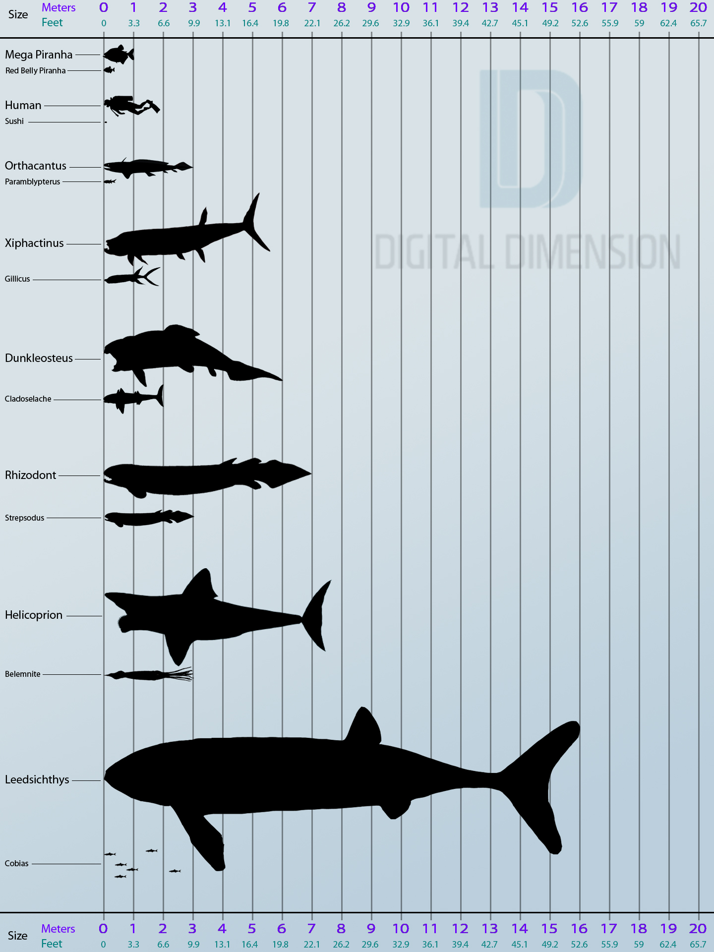 river monsters_infographic